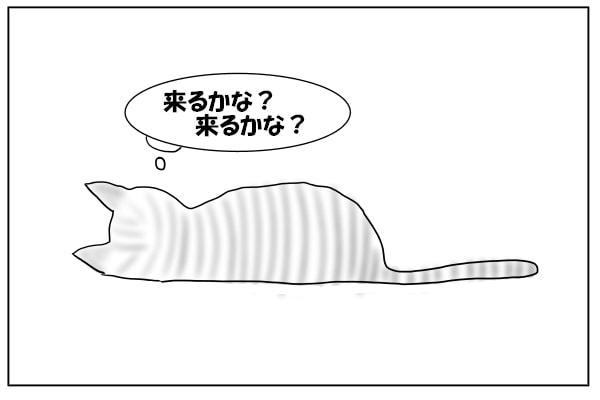 マネする猫