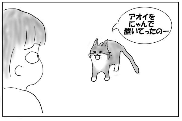 追いかけてきた猫