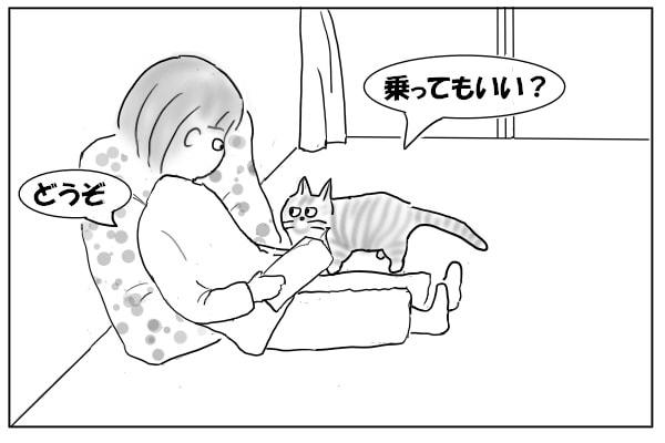 礼儀正しい猫