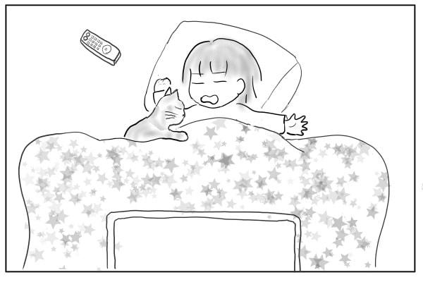 コタツで猫と寝る