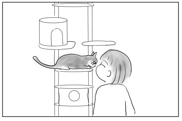 飼い猫と鼻鼻あいさつ