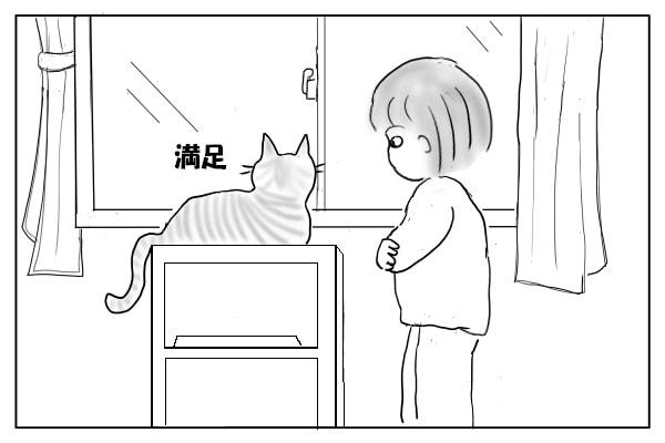 満足する猫