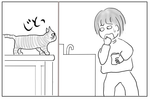 つまみ食いを観られる