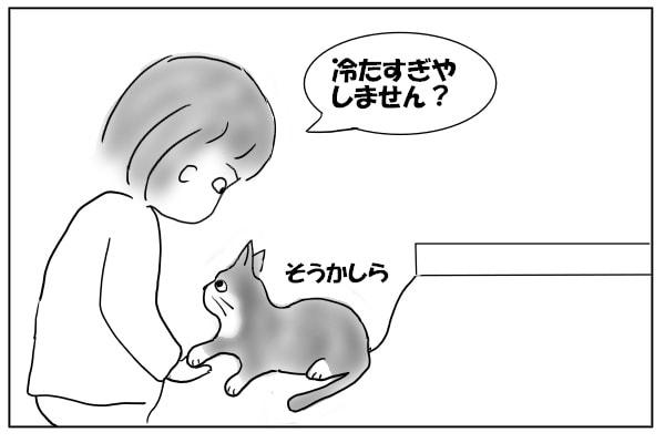 肉球が冷たい猫