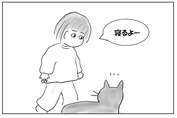 猫に声をかける