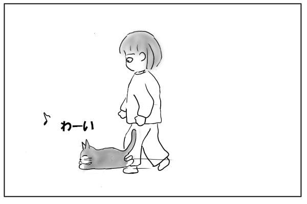 人を追い越す猫