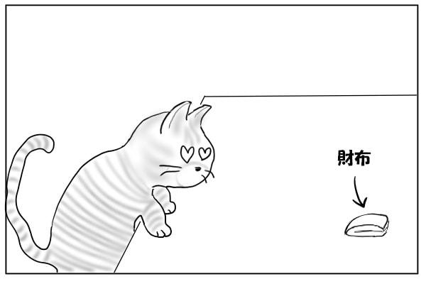 財布を見つけた猫