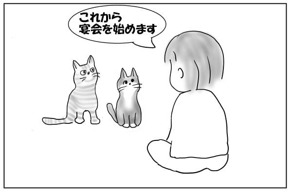 猫に言い聞かせる人