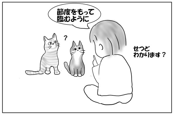 猫に話す人