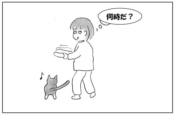 前に回りこむ猫