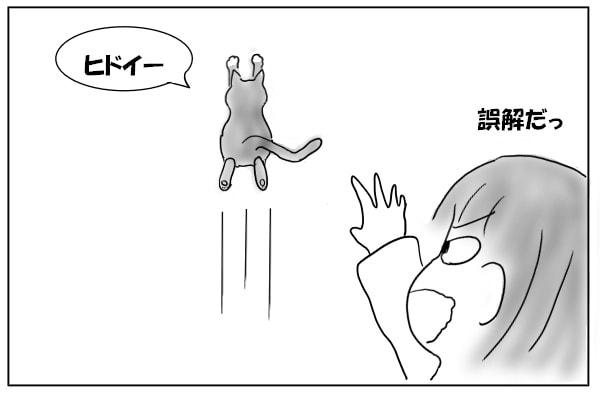 走っていく猫
