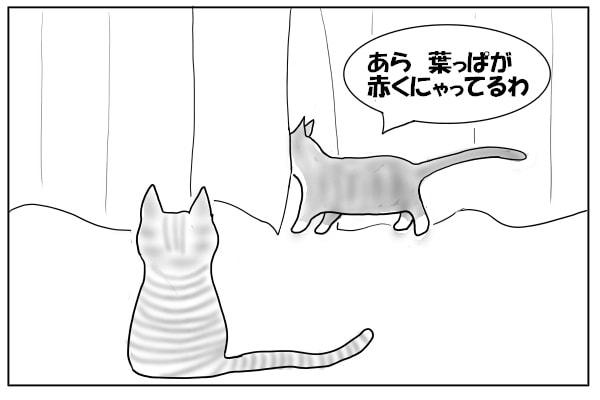 窓辺の猫たち