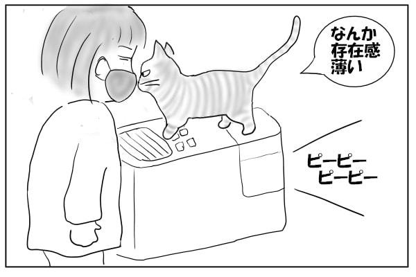 顔をすんすんする猫