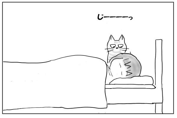 枕元に立つ猫