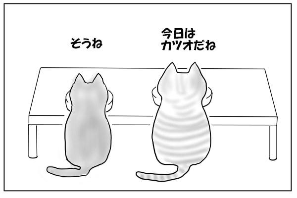 おやつを食べる猫たち