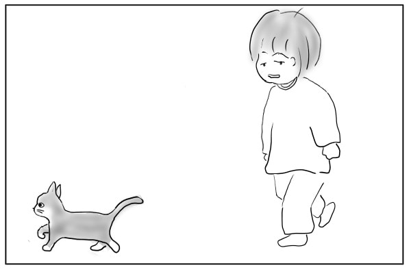 猫に誘導される