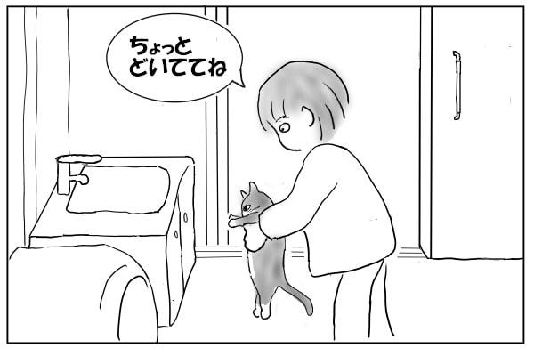 猫を持ち上げる女