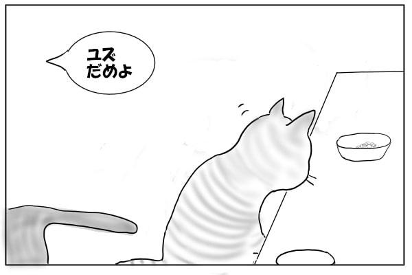 残りを食べたい猫