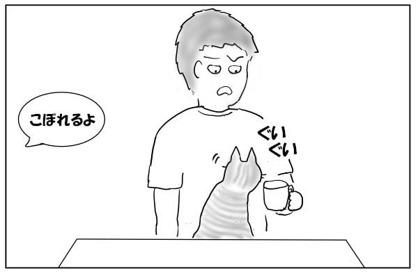 鼻をおしつける猫