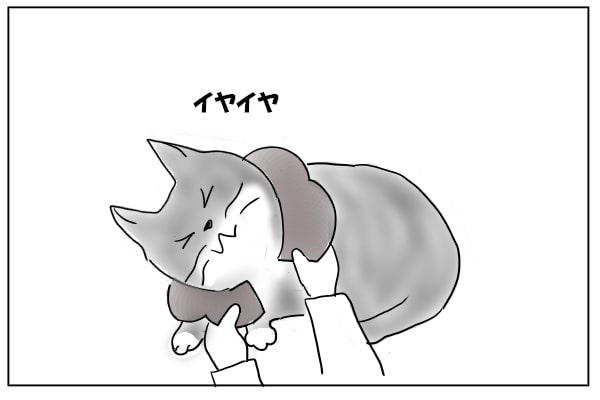 いやいやする猫