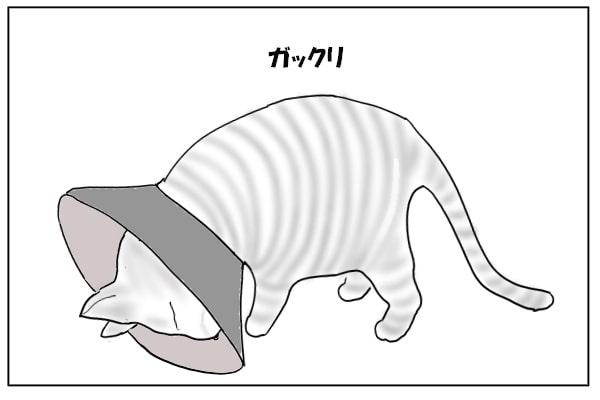 うなだれる猫