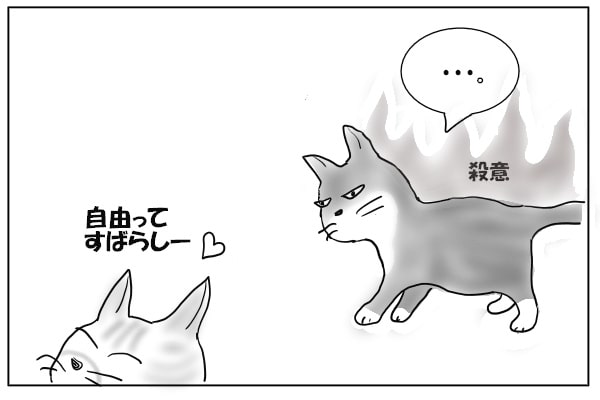 自由を満喫する猫