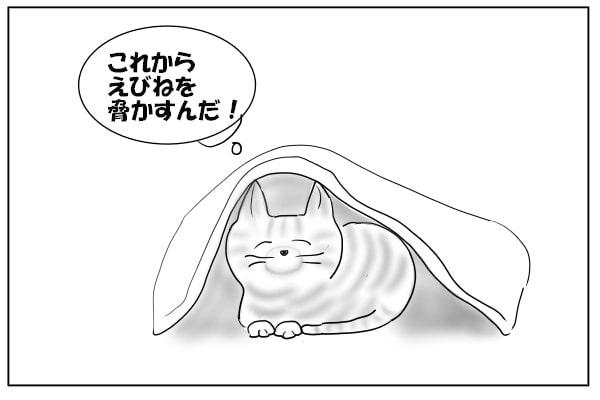 待ち構える猫