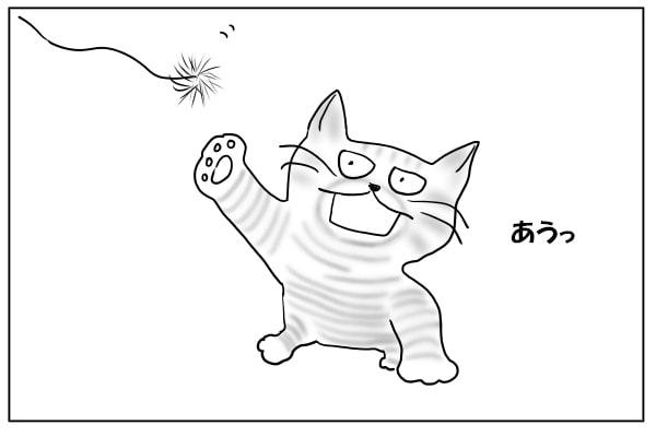遊んでる猫