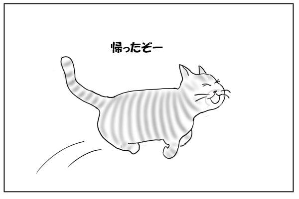 よろこぶ猫