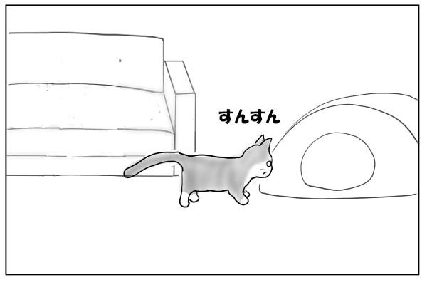 チェックをする猫
