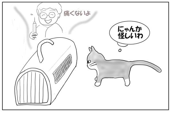 キャリーバッグをかぐ猫