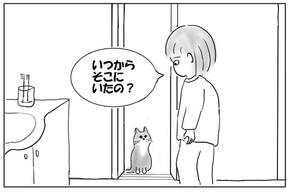 待っていた猫