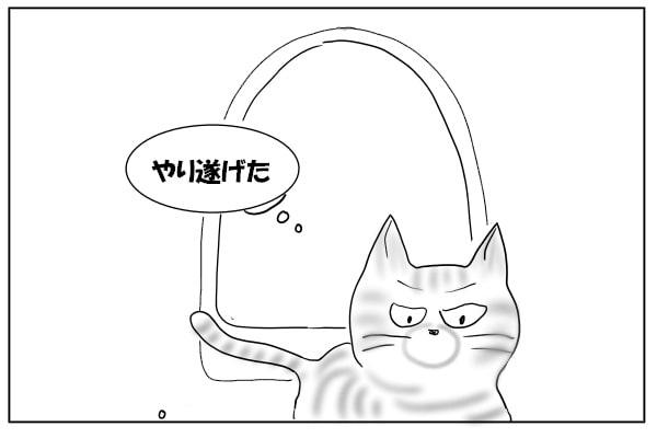 やり切った猫