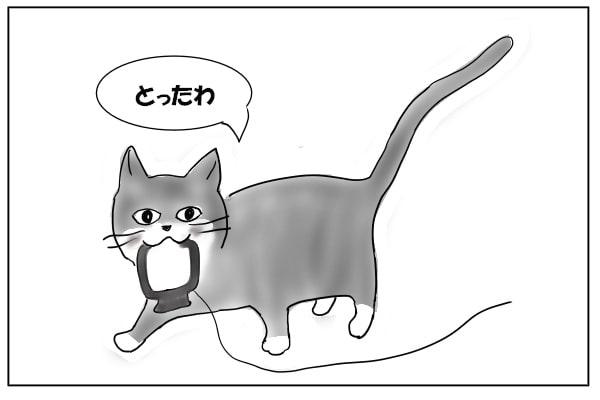 アンテナを運ぶ猫