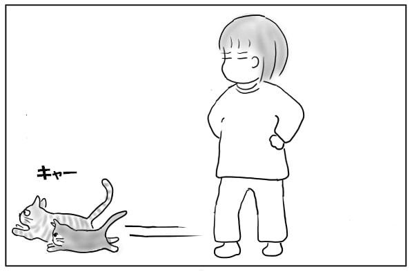 猫を追い出す