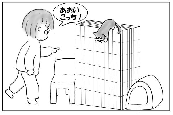 降りようとする猫