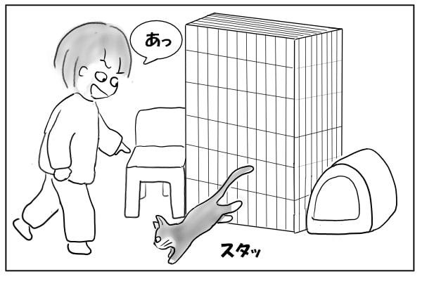 床に降りた猫