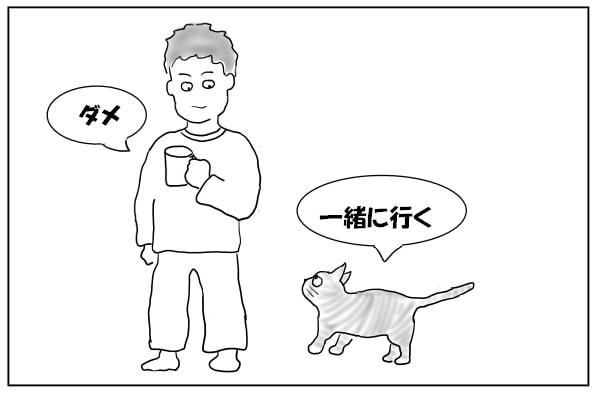 一緒に行きたい猫