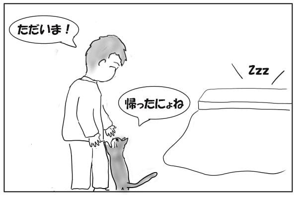 猫の出迎え