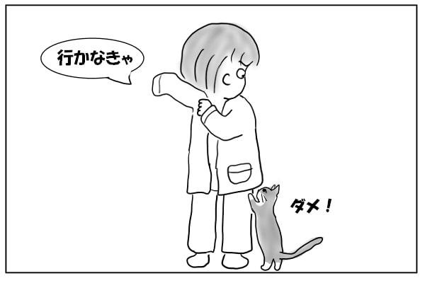 足をバリバリする猫