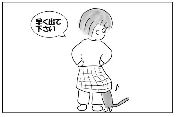 巻きスカートと猫