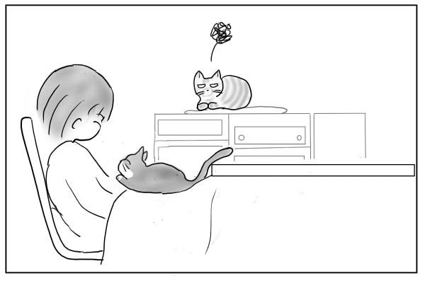 焼きもちをやく猫