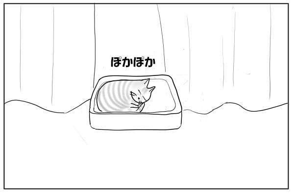 窓辺で昼寝