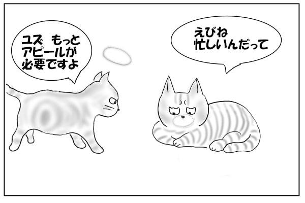 ちょっと悩む猫