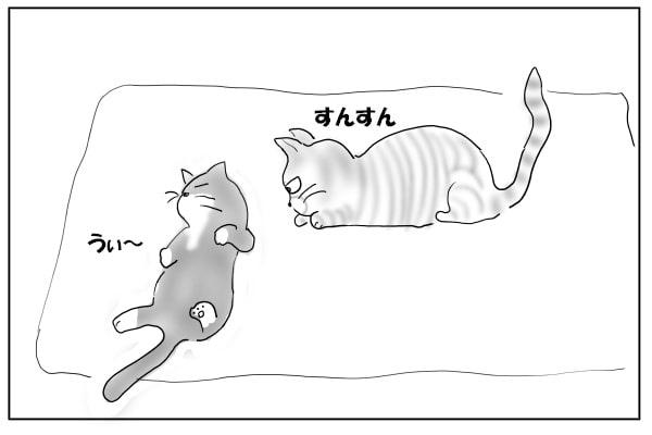 マタタビに酔う猫たち
