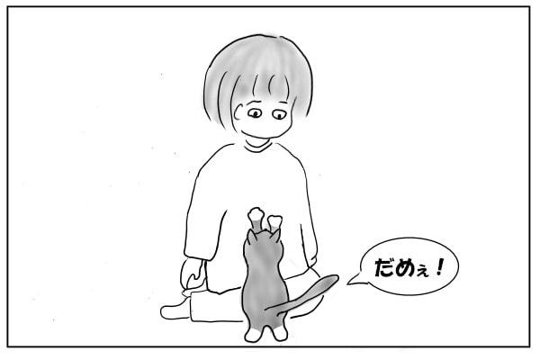 引き止める猫