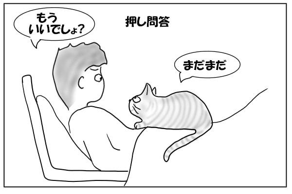 物足りない猫