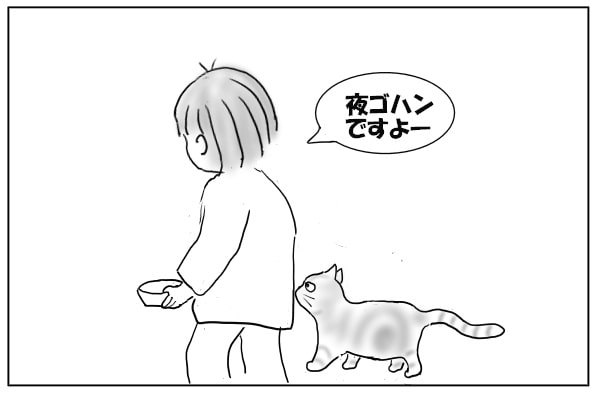 f:id:daidaiebine:20210309092613j:plain
