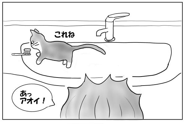 洗面台の上の猫