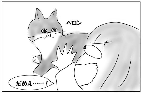 鼻をなめた猫